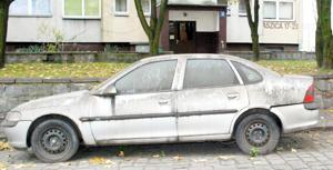 Samochód zdążył już obrosnąć gdzieniegdzie mchem